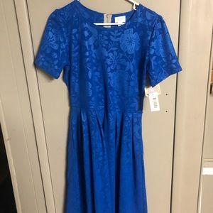 Cobalt Blue NWT Amelia Dress